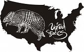 Armadillo and U.S. outline map. Black and white vector illustration. poster