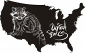Raccoon and U.S. outline map. Black and white vector illustration. poster