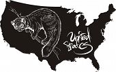 Marten and U.S. outline map. Black and white vector illustration. poster