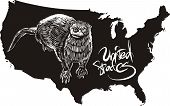 Otter and U.S. outline map. Black and white vector illustration. poster