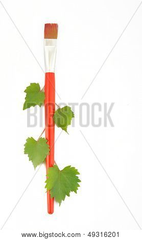 Paint brush and leaf isolated in white