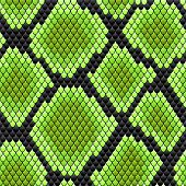 Green seamless pattern of reptile  skin for background design poster