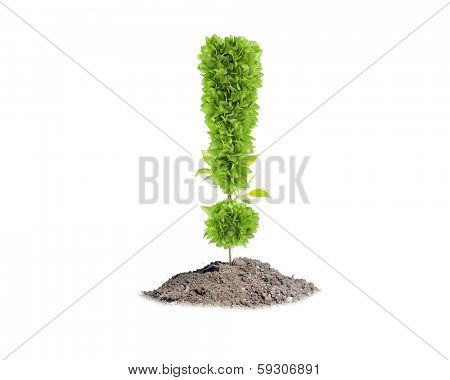 Green plant in shape of exclamation sign. Greenery concept poster
