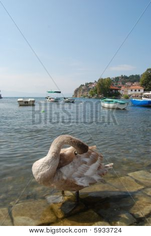 landscape of ancient city of Ohrid in Republic of Macedonia, poster