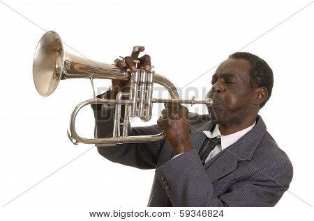 Afroamerican Jazz Musician with Flugelhorn Studio Shot poster