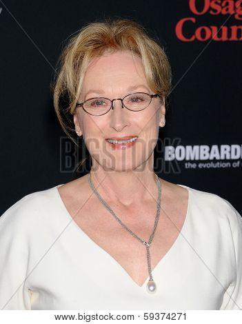 LOS ANGELES - DEC 16:  Meryl Streep arrives to the