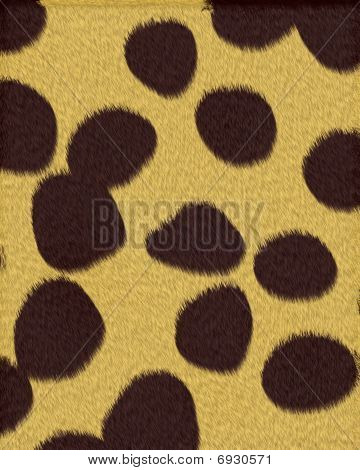 Cheeta fur