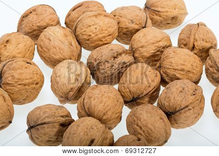 Ripe walnuts heap isolated on white background