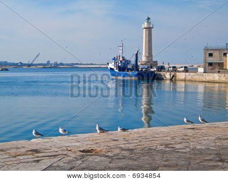 Landscape view of Molfetta touristic port.