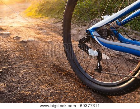 Wheel Mountain Bike Bicycle Detail