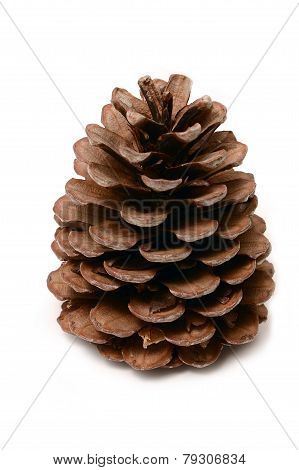 Cone Isolated On White Background