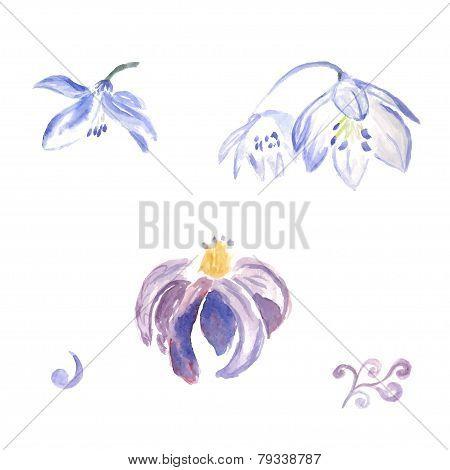 Watercolor violet flowers