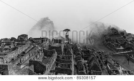 The Ruins Of Machu Picchu On A Foggy Ay