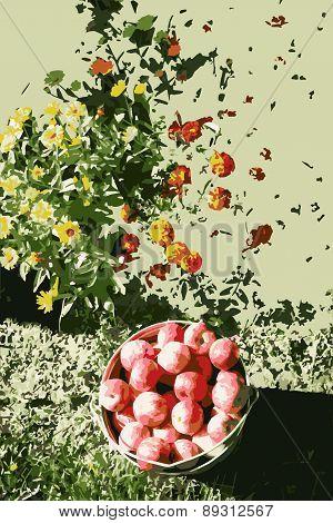 Vector Bucket Of Apples