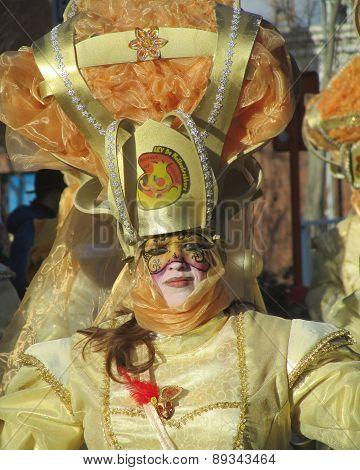 Belgian Carnival: Aalst 2014
