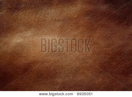 Brown Shiny Leather Texture.