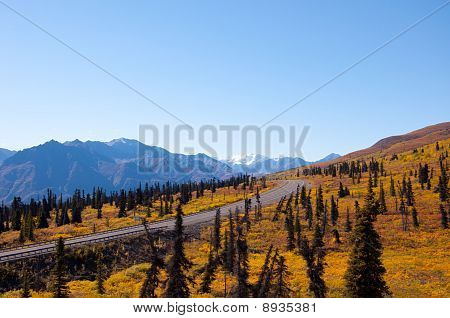 Fall Road Into Mountains