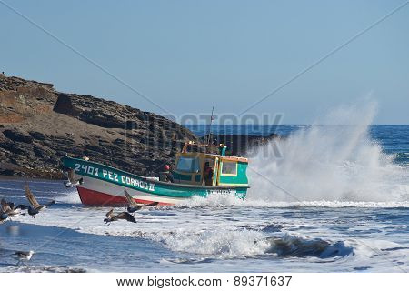 Fishing Boat Coming Ashore