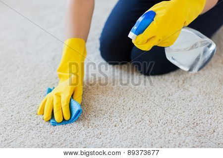 people, housework and housekeeping concept - close up of woman in rubber gloves with cloth and detergent spray cleaning carpet at home poster