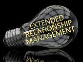 Extended Relationship Management - lightbulb on black background with text in it. 3d render illustration. poster