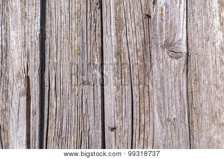 rough texture of the old decayed wooden boards with cracks for abstract backgrounds poster