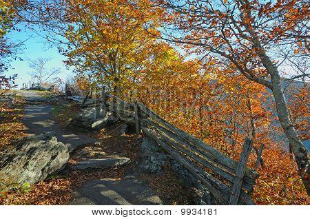 Fall Mountain Path