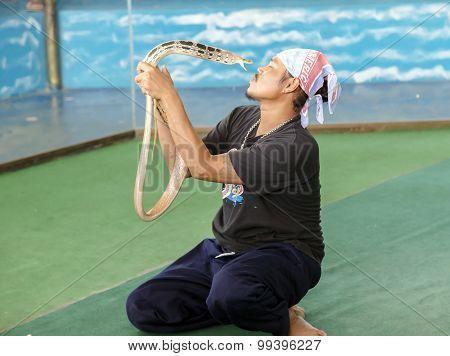 Dangerous kiss of snakes