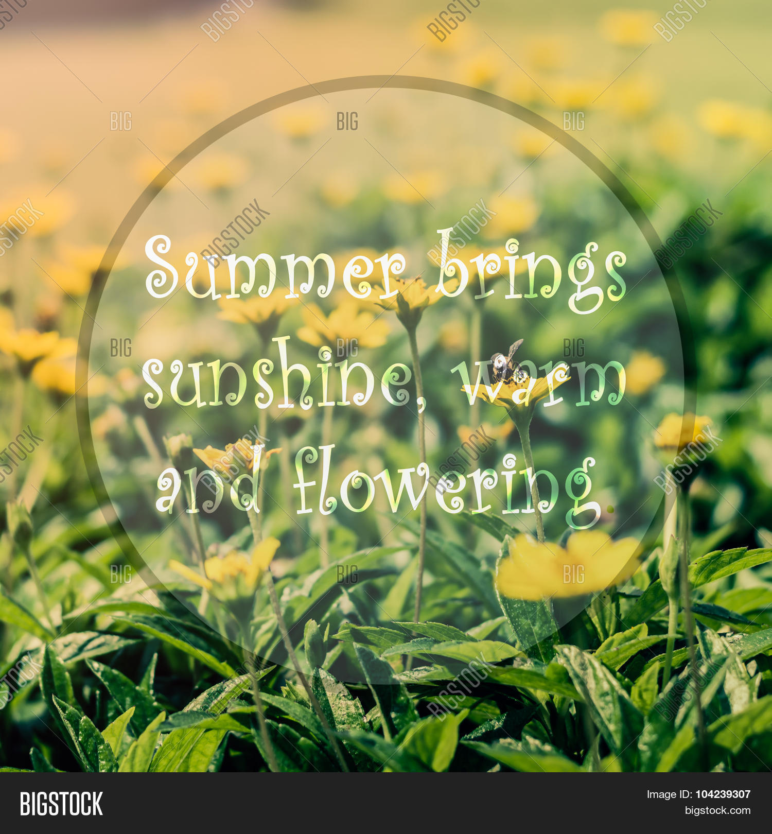 Meaningful Quote On Image Photo Free Trial Bigstock