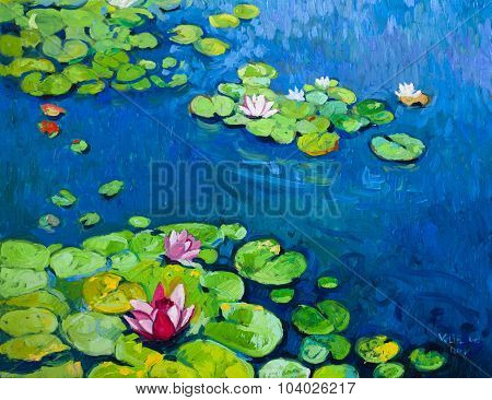 Beautiful lilies in pond.