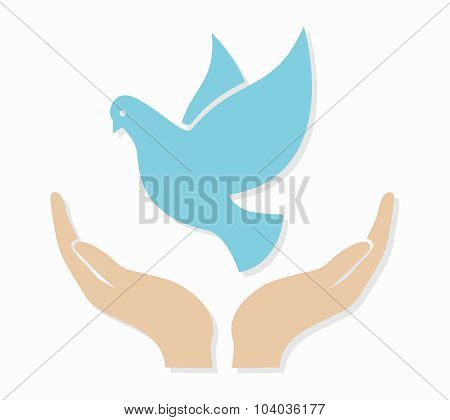 Vector dove in hand logo or icon