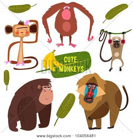Cute Fife Funny Monkeys Colorful Collection. (all Objects Are Isolated Groups So You Can Move And Se