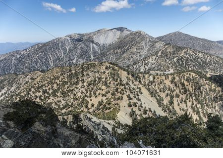 View of the 10,068 foot Mt Baldy summit.  The highest peak in Los Angeles County California.