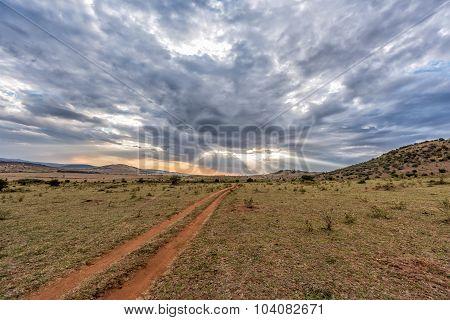 Road Of Maasai Mara