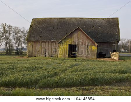 Old Barn With Field