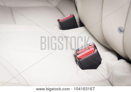 New car back seats