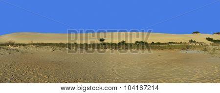 Sand Dune And Blue Sky Panorama