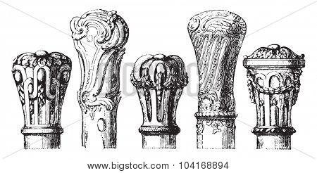 Apples canes eighteenth century, vintage engraved illustration. Industrial encyclopedia E.-O. Lami - 1875.