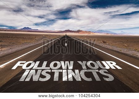 Follow Your Instincts written on desert road