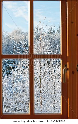 View Through A Window, Winter Time