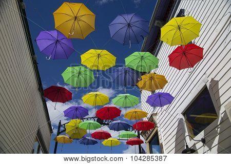 Colorful Umbrellas Suspended In Alleyway