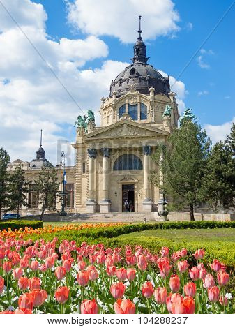 BUDAPEST HUNGARY - APRIL 19 2015: The Szechenyi Bath in Budapest Hungary with a flower garden in the front poster