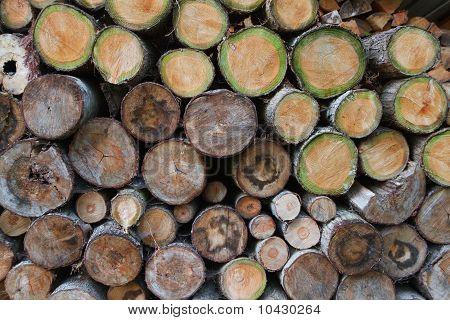 Green Wood Log Pile