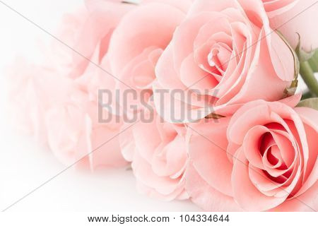 Rose Flower Bouquet Vintage Background