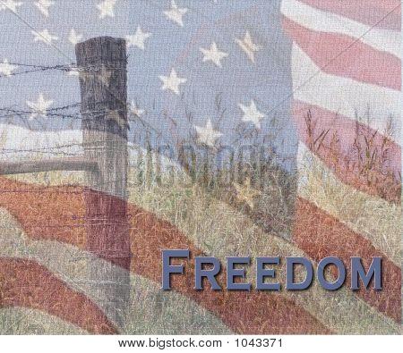 The American Spirit On Canvas