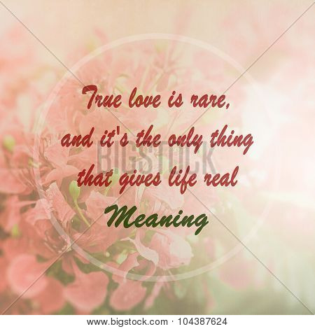 Meaningful Quote On Pink Flower Background