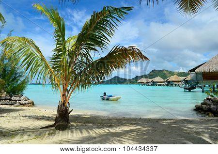 Luxury Resort Beach On Bora Bora