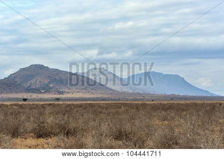 Landscape In Tsavo National Park, Kenya