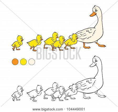 Coloring Book. Mother Duck And Ducklings.