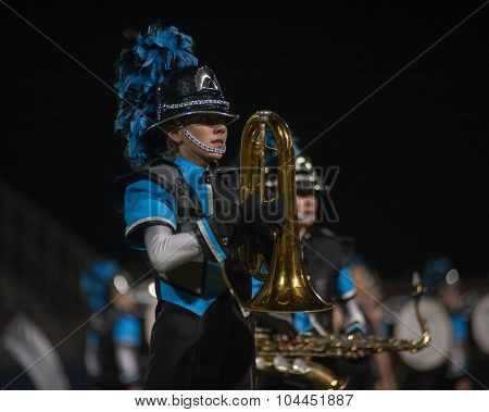High school marching band halftime show.