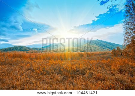 taiga and mountains in beauty autumn day